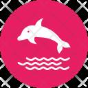 Dolphin Marine Swim Icon