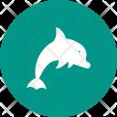 Dolphin Animal Wildlife Icon