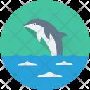 Dolphin Fish Mammal Icon