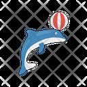 Dolphin Circus Icon