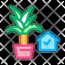 Domestic Potting Flower Icon