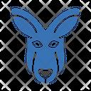 Donkey Face Zoo Icon