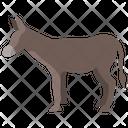 Donkey Animal Wildlife Icon