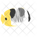 Double Saddle Butterfly Fish Icon