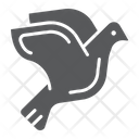 Dove Animal Bird Icon
