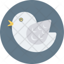 Dove Peace Pigeon Icon