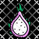 Healthy Food Dragon Fruit Pitaya Icon