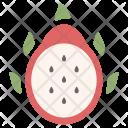 Dragon Fruit Healthy Icon