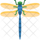 Dragonfly Insect Fly Icon