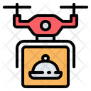 Drone Delivery Shipping Icon
