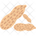 Dry fruit Icon
