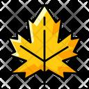 Autumn Leaf Dry Leaf Leaf Icon