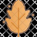 Dry Leaf Leaves Falling Icon