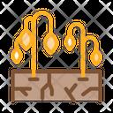 Dry Soil Plants Icon
