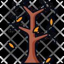 Tree Dry Tree Leaf Icon