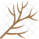 Tree Branch Dry Icon