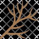 Dry Twig Icon
