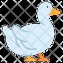 Duck Bird Water Bird Icon