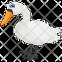 Duck Bird Farm Duck Icon