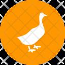 Duck Livestock Bird Icon