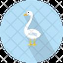Vector Illustration Bird Icon