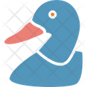 Duck Goose Domestic Fowl Icon