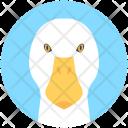Duck Goose Domestic Icon