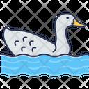 Duck Bird Animal Icon