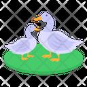 Ducks Icon