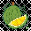 Durian Fruit Fresh Icon