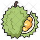 Fruit Vegan Durian Icon