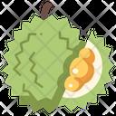 Durian Icon