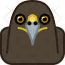 Eagle Predator Wild Icon