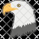 Eagle Flying Bird Falcon Icon