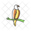 Eagle Animal Wildlife Icon