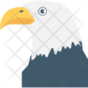 Eagle Bird Raptor Icon