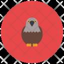 Eagle Animal Icon
