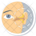 Ear Treatment Icon