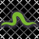 Earthworm Icon