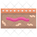 Earthworm In Earth Worm Animal Icon