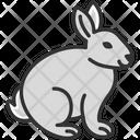 M Easter Rabbit Icon