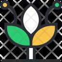Eco Greenery Growing Icon