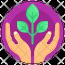 Eco Care Icon