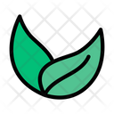 Green Leaf Leaves Icon