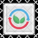 Energy Eco Green Icon