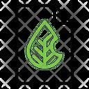 Eco File Icon