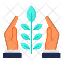 Eco Friendly Nature Icon