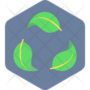 Eco Friendly Ecology Icon