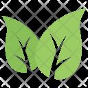 Two Logo Organic Icon