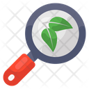 Eco Search Leaf Search Organic Research Icon